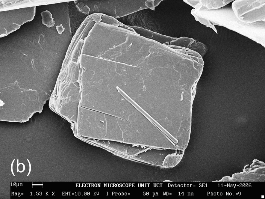 The microscopic flat plate like structure of clay seen in a microscopic photo.